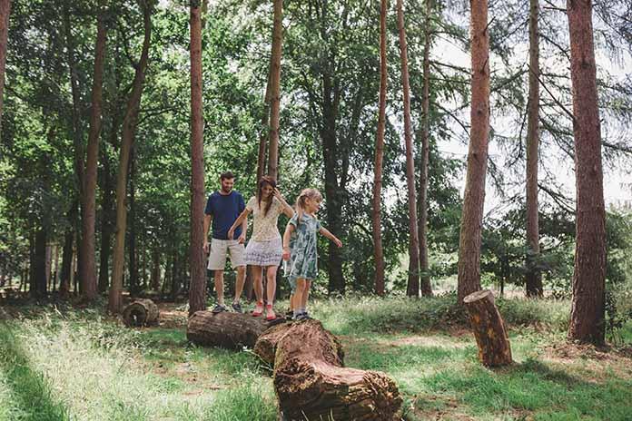 The Fairhurst Family Enjoying The Wild Wood At Markshall Estate